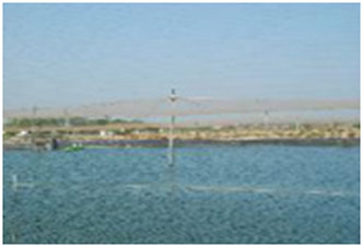 CAA - Coastal Aquaculture Authority  Ministry Of Agriculture And